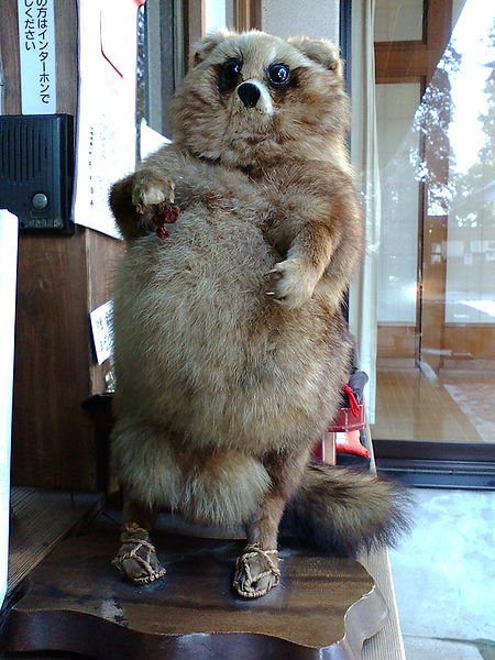 Taxidermie-fail-5