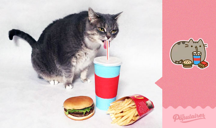 chat-obese-stickers-10