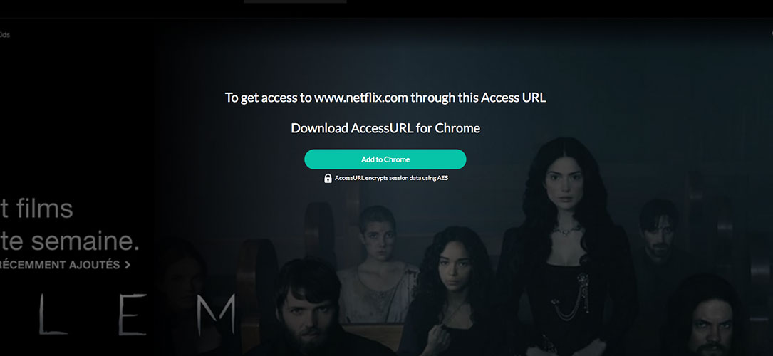 accessurl-extension-chrome-spotify-netflix-4