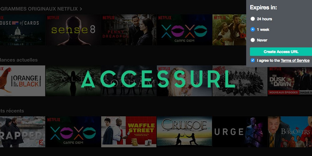 accessurl-extension-chrome-spotify-netflix-une